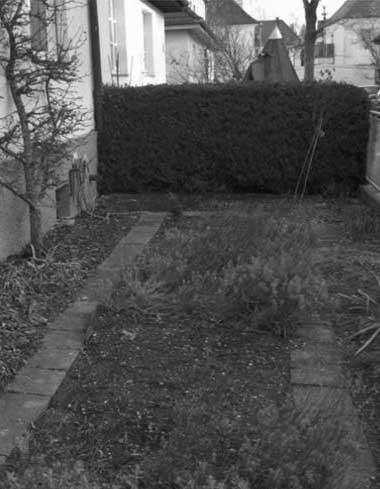 Balanstrasse 89d Bestand Vorgarten